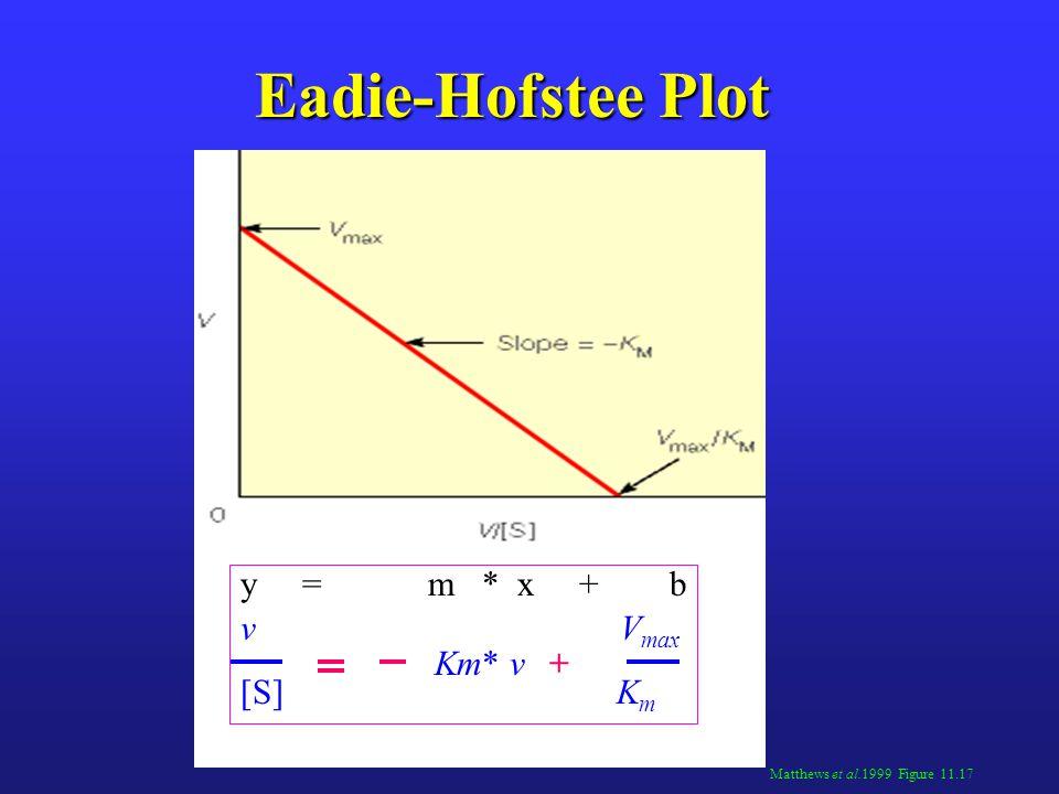 Eadie-Hofstee Plot y = m * x + b v Vmax [S] Km Km* v +